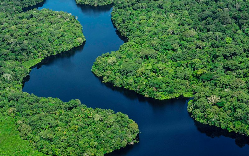 Internet Amazonia