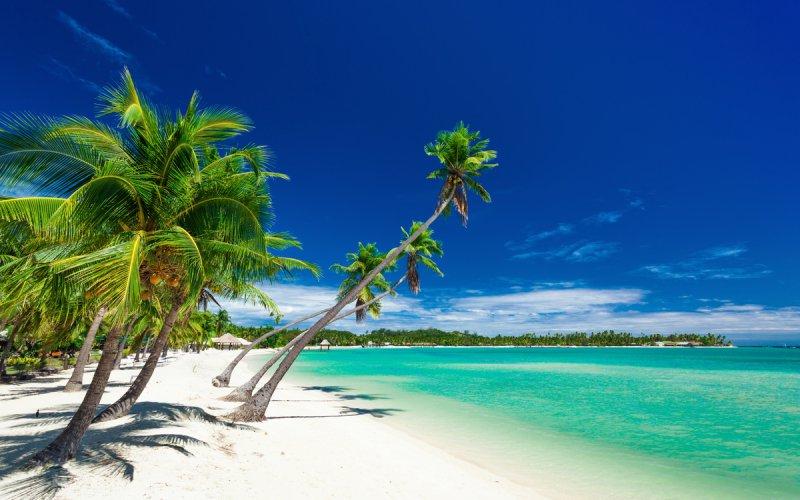 Internet Fidżi