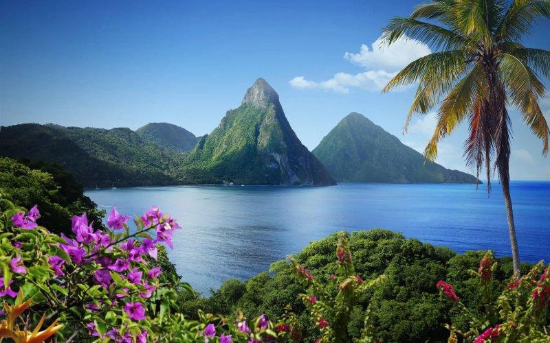 Internet Saint Lucia